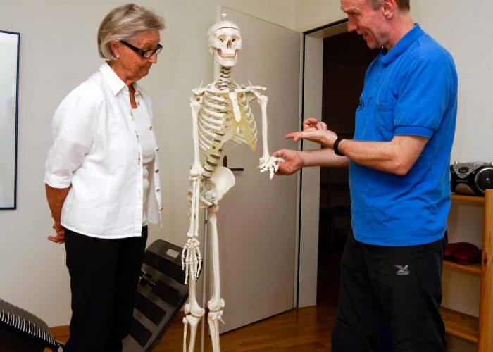 Anatomische Erläuterungen am Skelett (1)